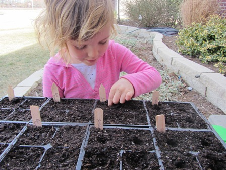 starting seeds 5
