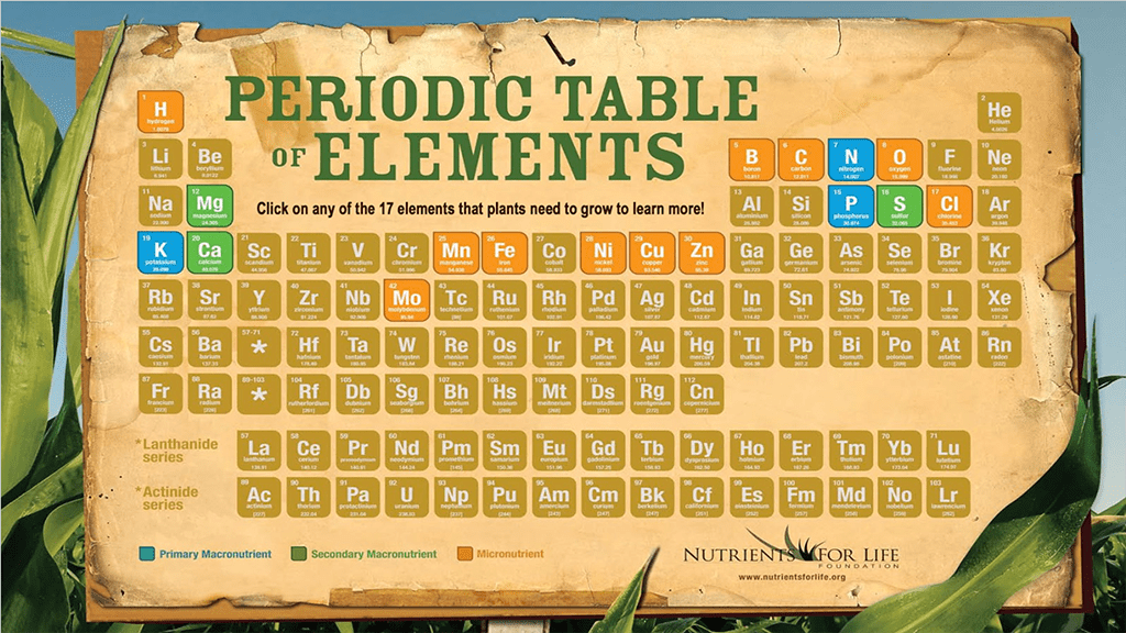 Interactive Periodic Table Of Elements Poster Nutrients For Life