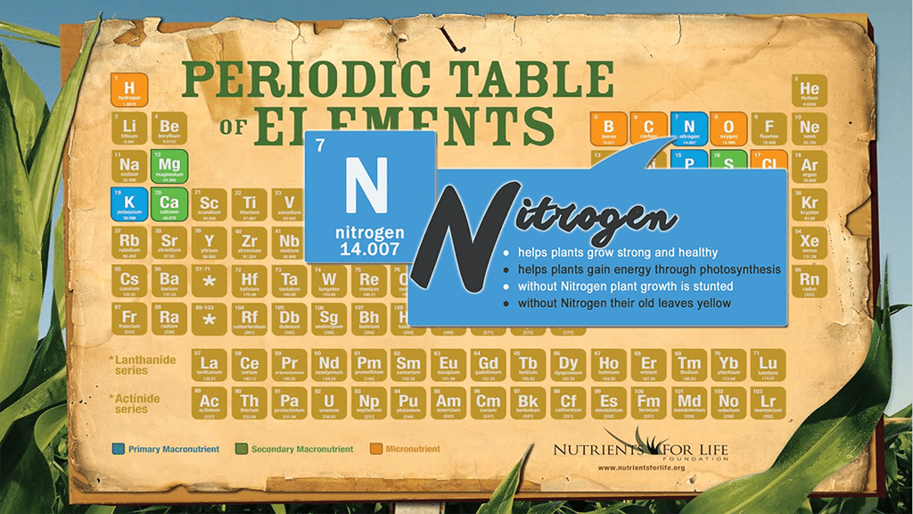 Interactive Periodic Table Of Elements Poster Nutrients